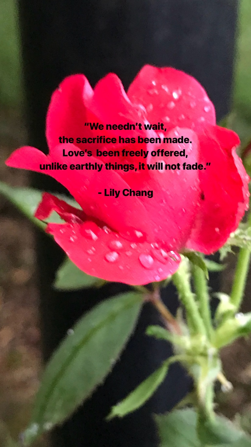 2018July8LilyChangLoveQuote
